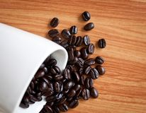 Splatter coffee beans . Stock Images