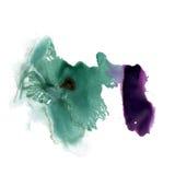 Splatter ink green purple watercolour dye liquid watercolor macro spot blotch texture isolated on white background Royalty Free Stock Photos