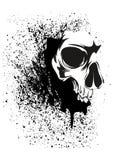 Splatter skull Stock Image