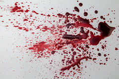 Splattered blood stain  on white background - photo. Splattered blood stain  on white background Royalty Free Stock Photos