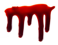 Splattered blood stains on white background Stock Image