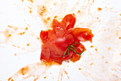 Splattered  tomato. Close up of  a splattered tomato on white background Royalty Free Stock Photos