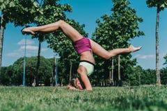 Spleet op ellebogen in het park op een gras in een zonnige dag stock foto's