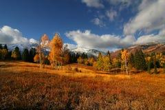 splender d'automne photo stock