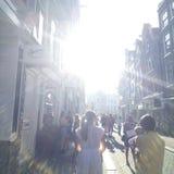 Splendere di Sun fotografia stock libera da diritti