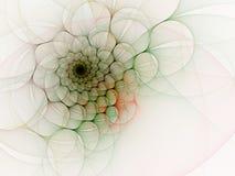 Splendeur spiralée contre le blanc Photographie stock