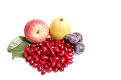 Splendid autumn fruits on a white. Royalty Free Stock Photography