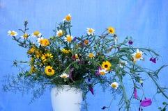 Splendid bouquet of wildflowers. On blue Stock Photo