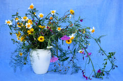 Splendid bouquet of wildflowers Stock Images