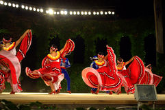 Splendid dance show Stock Images
