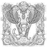 Splendid elephant coloring page Stock Image