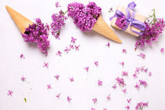 Splendid lilac flowers in waffle cones  and box with present  on Royalty Free Stock Photos