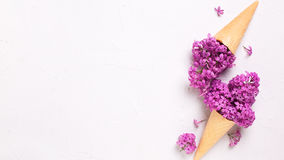 Splendid lilac flowers in waffle cones on grey textured backgrou Royalty Free Stock Photos