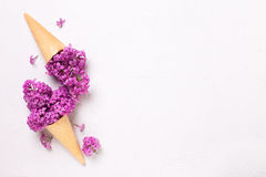 Splendid lilac flowers in waffle cones on grey textured backgrou Royalty Free Stock Image
