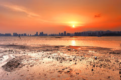 Splendid mudflat sunset Stock Photo