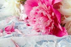 Splendid pink peonies flowers on lace Stock Photo