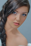 Splendid plait Royalty Free Stock Image