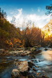 The Splendid River. Autumn colors on the Big Cottonwood river in the Wasatch national forest in Utah USA Royalty Free Stock Image