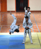 Splendid show of contestants with black belt --The seventh GoldenTeam Cup Taekwondo friendly competition Stock Images