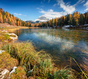 Splendid sunny scene on Antorno lake with Tre Cime di Lavaredo Stock Photos