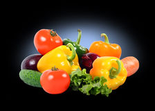 Splendid vegetable composition on black Stock Photography