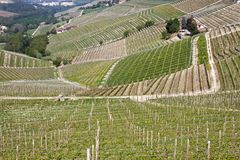 Aerial view of the vineyards of Barbaresco, Piedmont. The splendid vineyards of Barbaresco, in the province of Cuneo in the Italian region of Piedmont stock photo
