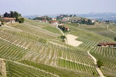 Aerial view of the vineyards of Barbaresco, Piedmont. The splendid vineyards of Barbaresco, in the province of Cuneo in the Italian region of Piedmont royalty free stock images