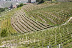 Aerial view of the vineyards of Barbaresco, Piedmont. The splendid vineyards of Barbaresco, in the province of Cuneo in the Italian region of Piedmont royalty free stock photos
