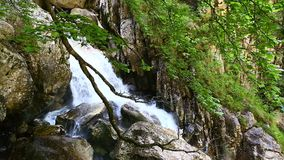 Splendid waterfall in wild canyon stock video