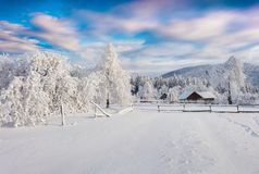 Splendid winter sunrise in the Carpathian village. Sunny outdoor scene in the garden after heavy snowfall, Happy New Year celebration concept. Artistic style Stock Photos