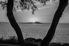 Splendida vista di due alberi con uno sfondo dell isola ed un tramonto Royalty Free Stock Photo