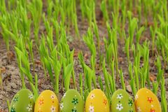 Easter is one of the two most important holidays in the Christian religion. The splendor of spring colors on Easter eggs means that great news connected with Royalty Free Stock Photo