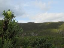 Splendore della montagna Fotografia Stock Libera da Diritti