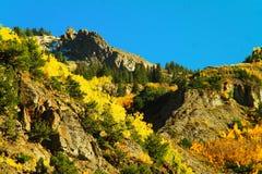 Splendore di autunno Fotografie Stock