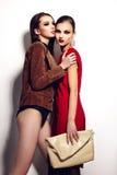 Splendoru zbliżenia portret dwa pięknych seksownych eleganckich brunetek Kaukaskiej młodej kobiety modeluje z jaskrawym makeup z c obraz royalty free