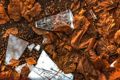 Splinters of the broken mirror. Against the fallen-down autumn leaves Stock Photography