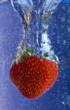Splish Splash Strawberry Royalty Free Stock Images