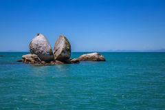Split apple rock with seagull on top next to Kaiteriteri beach,. Abel Tasman National Park, New Zealand, South Island in summer closeup photo Royalty Free Stock Images