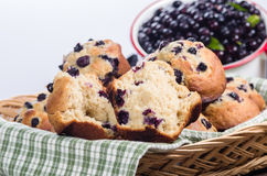 Split berry muffin with berries Stock Photos