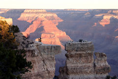 Split Canyon Wall. View of the split wall of the Grand Canyon in Arizona Stock Images