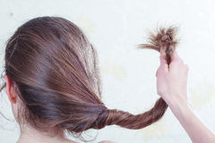 Split ends of hair Royalty Free Stock Image