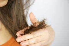 Split ends hair of brunette female model. Holding hand Royalty Free Stock Photography
