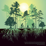 Split illustration with trees and roots. Family riding bicycles Stock Photos