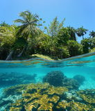 Split image tropical shore and corals underwater Stock Photography