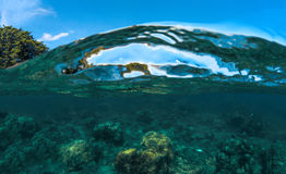 Split landscape with sea and sky. Sea water double photo. Undersea view of coral. Royalty Free Stock Images