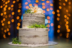Split-level wedding cake with natural flowers on bokeh background Stock Image