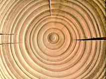 Split log background. Tree rings with splits and cracks background Royalty Free Stock Images