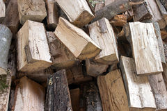 Split logs cut down Royalty Free Stock Photos