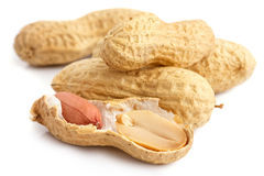 Split open peanut shells with nuts visible Royalty Free Stock Image