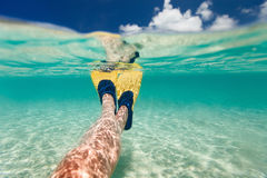 Split photo of  woman legs with fins Royalty Free Stock Photography